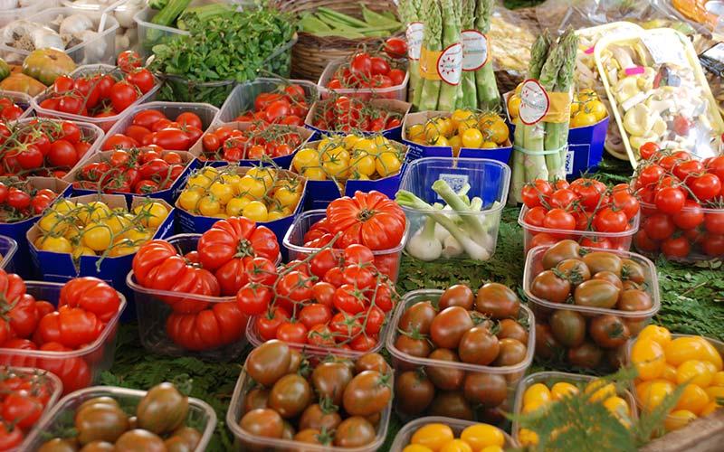carnivori vs vegetariani, verdure